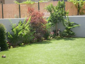 טיפול בדשא טבעי